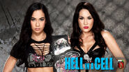 HIAC 2013 AJ v Brie