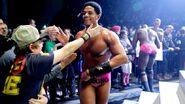 WWE World Tour 2013 - Leeds.3