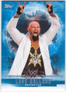 2017 WWE Undisputed Wrestling Cards (Topps) Luke Gallows 22
