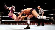 WrestleMania Revenge Tour 2013 - Dublin.4
