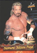 1999 WCW Embossed (Topps) Diamond Dallas Page 6