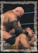 2004 WWE Chaos (Fleer) A-Train 33