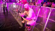 WWE Live Tour 2017 - Dublin 5
