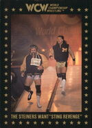 1991 WCW Collectible Trading Cards (Championship Marketing) The Steiners 104