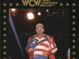 1991 WCW Collectible Trading Cards (Championship Marketing) U.S.A. Sting (No.84)