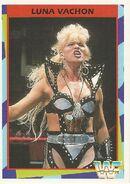 1995 WWF Wrestling Trading Cards (Merlin) Luna Vachon 134