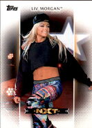 2017 WWE Women's Division (Topps) Liv Morgan 7