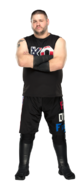 Kevin Owens stat photo 2017