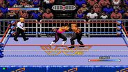 WWF Rage in the Cage (Game).7