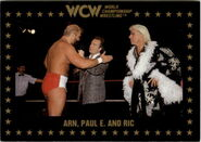 1991 WCW Collectible Trading Cards (Championship Marketing) Arn, Paul E, & Ric Flair 48