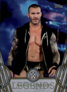 2018 Legends of WWE (Topps) Randy Orton 66