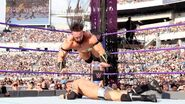 WrestleMania 33.5