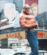 Superstar Billy Graham 24
