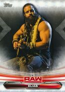 2019 WWE Raw Wrestling Cards (Topps) Elias 28