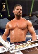 2017 WWE Wrestling Cards (Topps) Bobby Roode 65