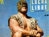 Lucha Libre 11