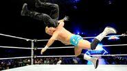 WrestleMania Revenge Tour 2013 - Birmingham.3