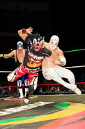 CMLL Martes Arena Mexico (May 22, 2018) 19