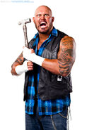 Doc Gallows TNA Profile