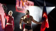 WWE World Tour 2014 - Birmingham.8