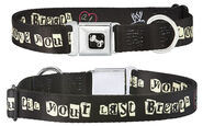 AJ Lee Till Your Last Breath Dog Collar