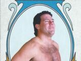 2008 WWE Heritage IV Trading Cards (Topps) Tully Blanchard (No.88)