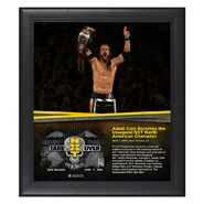 Adam Cole NXT TakeOver New Orleans 15 x 17 Framed Plaque