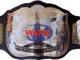 1995 WWF World Tag Team Championship Tournament