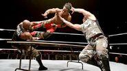 WWE World Tour 2015 - Bologna 3
