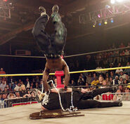 TNA 12-11-02 36