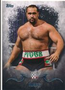 2016 Topps WWE Undisputed Wrestling Cards Rusev 30