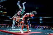 CMLL Martes Arena Mexico (September 24, 2019) 25