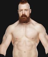 WWESheamus0