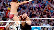 WrestleMania 28.44