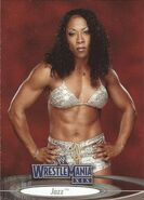 2003 WWE WrestleMania XIX (Fleer) Jazz 73