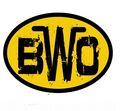 Bodyslam Wrestling Organization (Logo).jpg