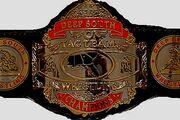 Deep South Tag Team Champion