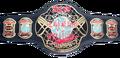 ECW world 06-08