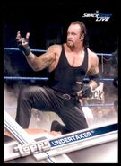 2017 WWE Wrestling Cards (Topps) Undertaker 58