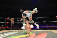 CMLL Domingos Arena Mexico (January 13, 2019) 3