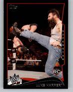2014 WWE (Topps) Luke Harper 30