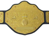Big Gold Belt