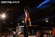 DDT 20130825 dino-tbacktable