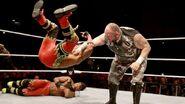 WWE World Tour 2015 - Bologna 2