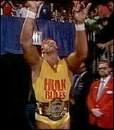 16 Hulk Hogan 3