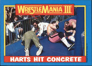 1987 WWF Wrestling Cards (Topps) Harts Hit Concrete 57