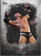 2016 Topps WWE Undisputed Wrestling Cards Randy Orton 27