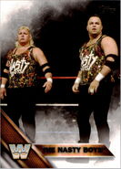 2016 WWE (Topps) The Nasty Boys 80