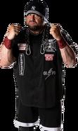Bully Ray - ROH