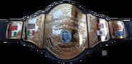 Hogan 86 championship rare